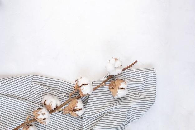 Ramo de algodão seco no guardanapo listrado amassado Foto Premium