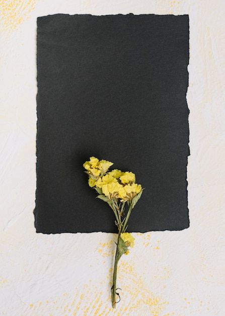 Ramo de flor amarela com papel preto na mesa Foto gratuita
