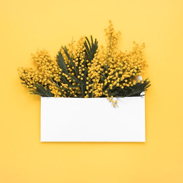 Ramos de flores amarelas no envelope Foto gratuita