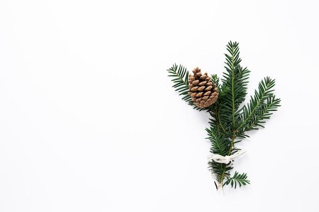 Ramos de pinheiro com espaço de cópia Foto gratuita