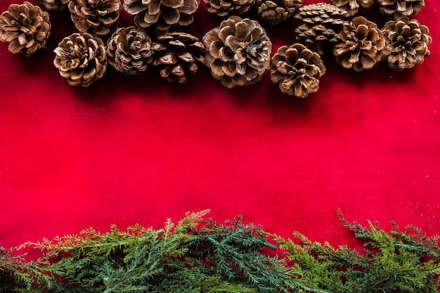 Ramos verdes arborvitae e senões de pinheiro Foto gratuita