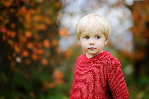 Rapaz elegante vestindo uma camisola vermelha. retrato, de, toddler, criança, em, outono Foto Premium