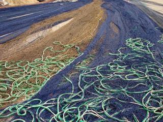 Redes de pesca, rural Foto gratuita