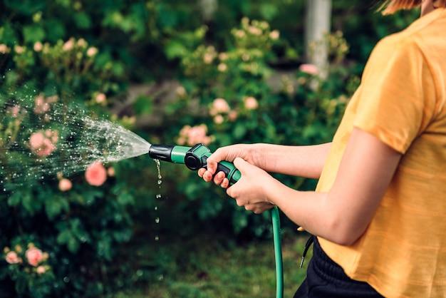 Rega de jardim com aspersão de mangueira Foto Premium