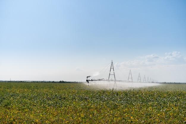 Rega de sistema de irrigação no campo agrícola Foto Premium