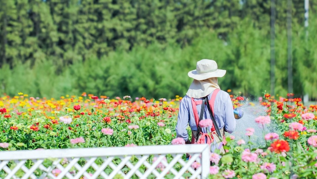 Regando flores no centro de jardim Foto Premium