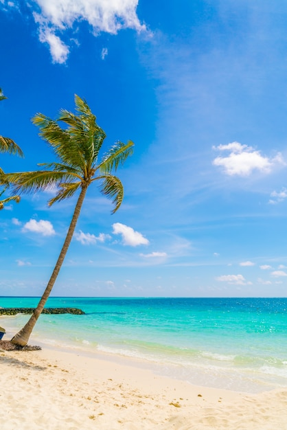 Relaxamento oceano recreação turismo dia Foto gratuita