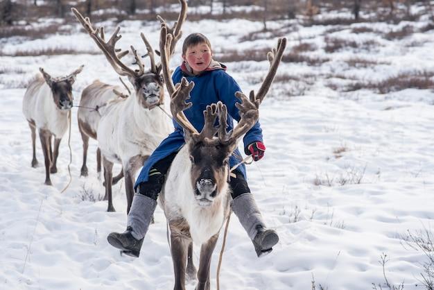 Rena mongol na tradicional família tsaatan em suas renas em taiga, mongólia Foto Premium