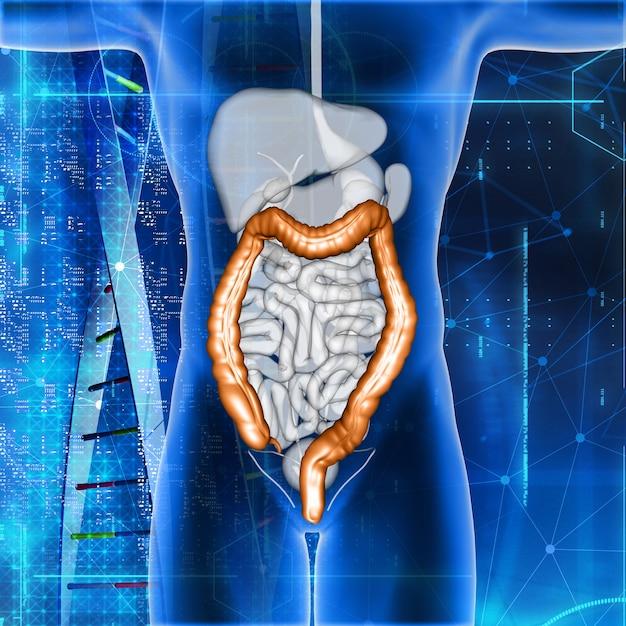Renderização 3d de uma figura médica masculina com dois pontos destacados Foto gratuita