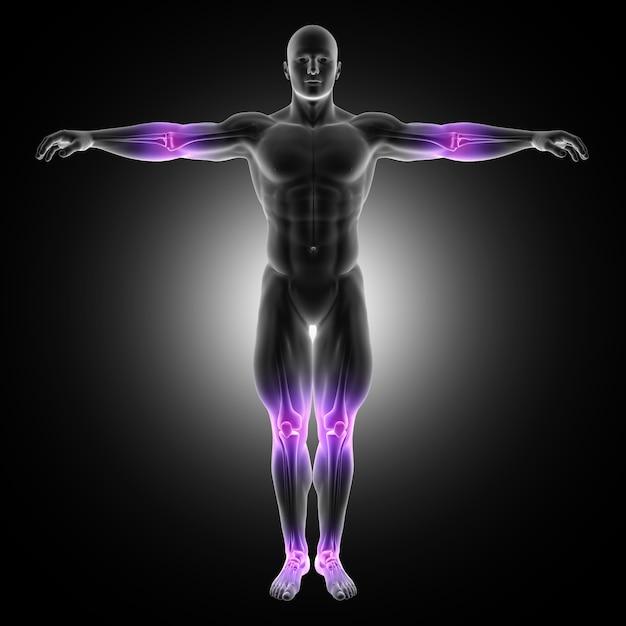 Representação 3d de uma figura médica masculina em pose de pé com juntas destacadas Foto gratuita