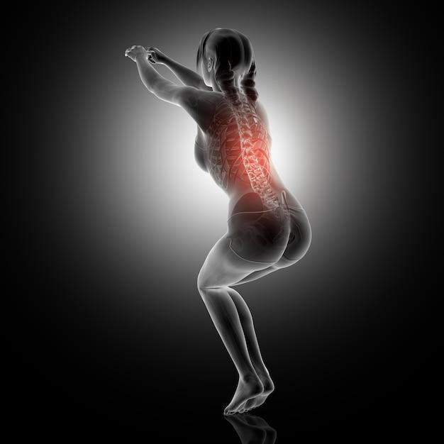 Representação 3d de uma mulher em posição de agachamento com coluna vertebral destacada Foto gratuita