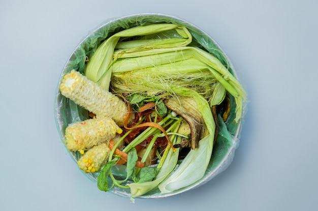 Resíduos de alimentos orgânicos em um balde, um tiro de cima. Foto Premium