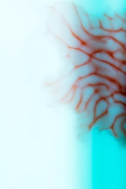 Resumo de desfocado close-up de veias humanas Foto gratuita