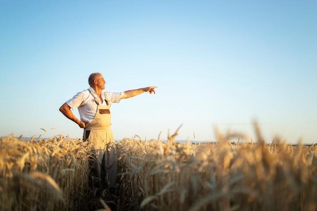 Retrato de agrônomo fazendeiro sênior no campo de trigo, olhando à distância e apontando o dedo Foto gratuita