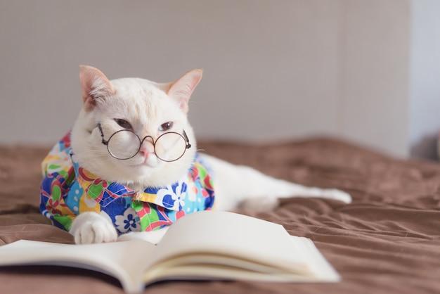 Retrato, de, gato branco, desgastar, óculos, e, livro leitura Foto Premium