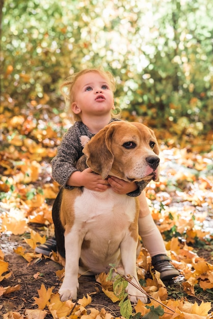 Retrato, de, menina, tocando, com, cachorro beagle, em, floresta Foto gratuita