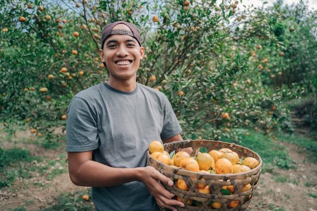 Retrato de um agricultor masculino feliz colhendo frutas de laranja em um campo de laranjeira Foto Premium