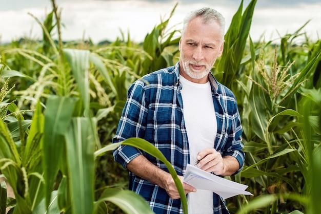 Retrato, de, um, agricultor sênior, ficar, em, um, campo milho, tomar, controle, de, a, rendimento, e, fazer uma nota Foto Premium
