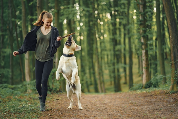 Mulher que sabe como adestrar um cachorro em parque