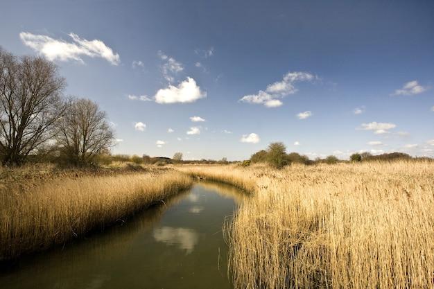 Rio alde cercado por campos sob a luz do sol e um céu azul no reino unido Foto gratuita