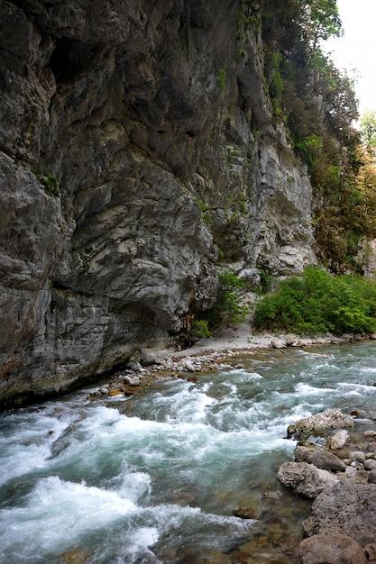 Rio da montanha na abkhazia Foto Premium