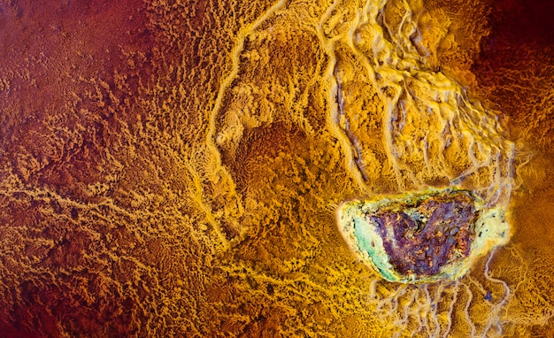 Rocha mineral cercada por estromatólitos Foto Premium