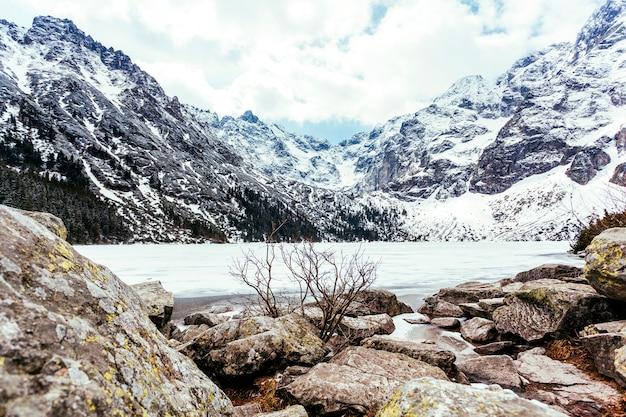 Rocha perto do lago e montanha no verão Foto gratuita
