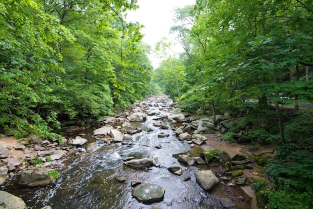 Rock creek park Foto gratuita