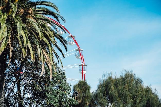 Roda gigante e árvore Foto gratuita