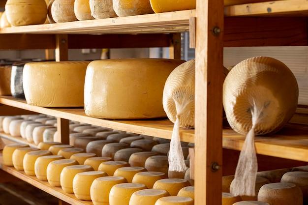 Rodas de queijo orgânico delicioso Foto gratuita
