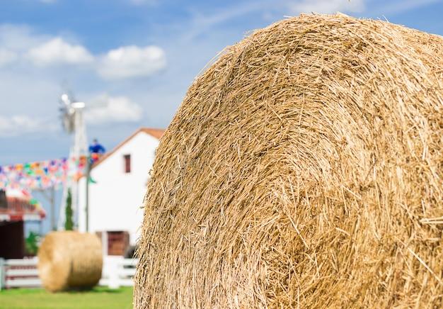 Rolo grande de palha na fazenda Foto Premium