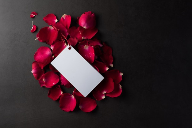 Rosa vermelha com cartão branco em branco branco Foto gratuita