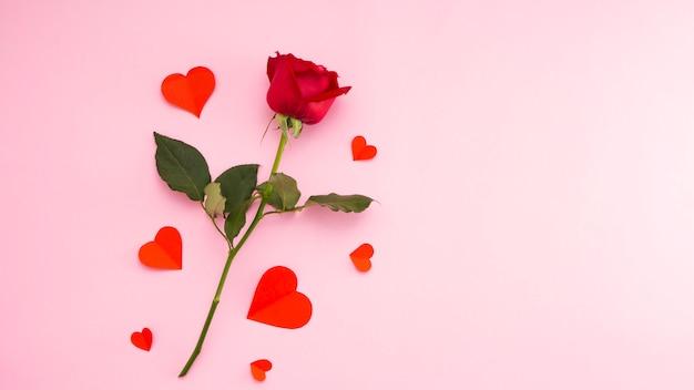Rosa vermelha com papel de coração vermelho Foto Premium