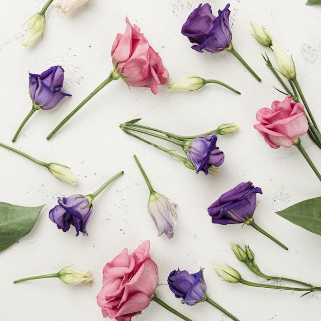 Rosas coloridas de vista superior na mesa Foto gratuita