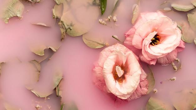 Rosas cor de rosa na água rosa Foto gratuita
