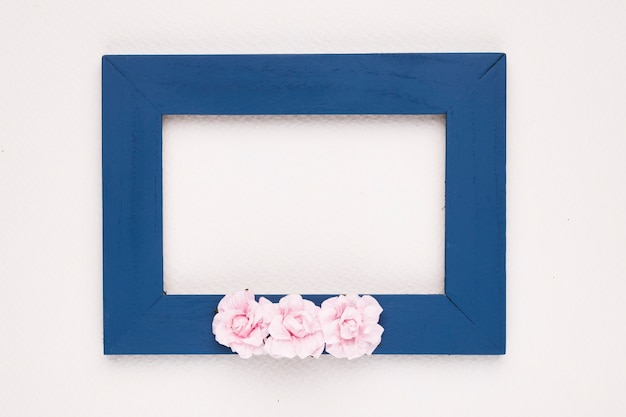 Rosas cor de rosa na armação de borda azul sobre o pano de fundo branco Foto gratuita