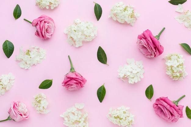Rosas e lilases plana leigos Foto Premium