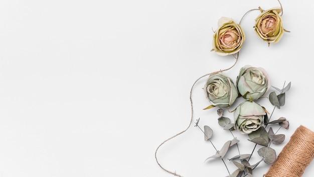 Rosas planas leigos com cópia-espaço Foto gratuita