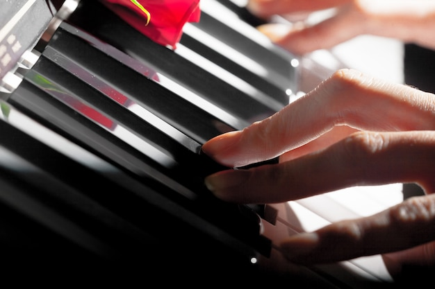 Rosas vermelhas em teclas de piano Foto Premium