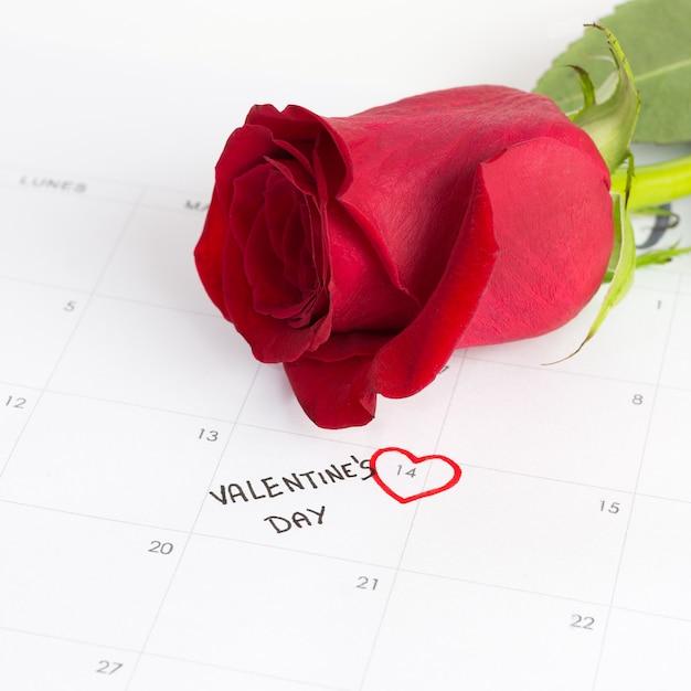 Rose e calendário para dia dos namorados Foto Premium