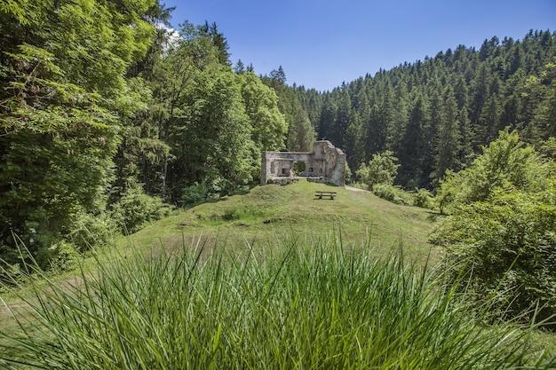 Ruínas de um antigo castelo em vuzenica, eslovênia durante o dia no verão Foto gratuita