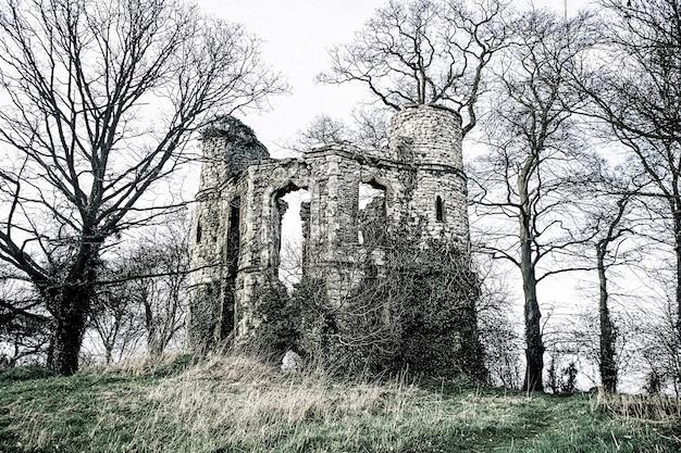 Ruínas do antigo castelo em uma floresta inglesa Foto gratuita