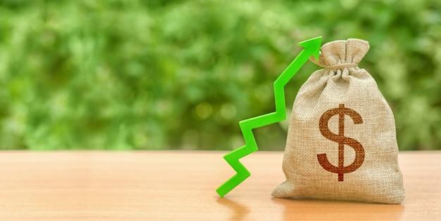 Saco de dinheiro com o símbolo do dólar e verde seta para cima. aumentar lucros e riqueza. crescimento dos salários Foto Premium