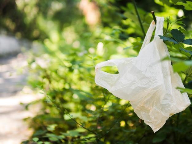 Saco de plástico pendurado no galho de árvore ao ar livre Foto gratuita