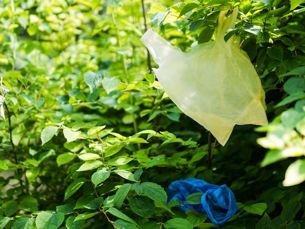 Saco de plástico pendurado no galho de árvore no jardim Foto gratuita