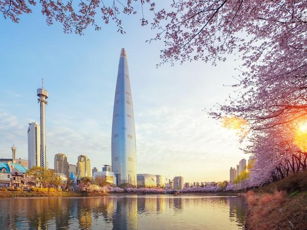 Sakura ou parque flor de cerejeira em seoul cit Foto Premium
