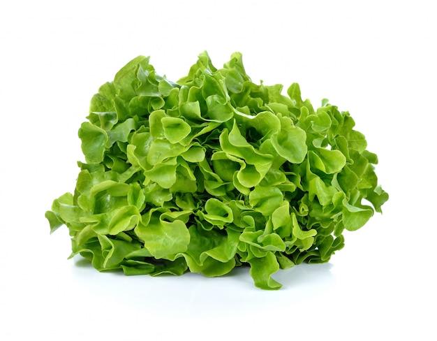 Salada de alface fresca isolada Foto Premium