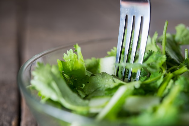 Salada de coentro fresca, coentro com salada de pepino. conceito de alimentos saudáveis. Foto gratuita