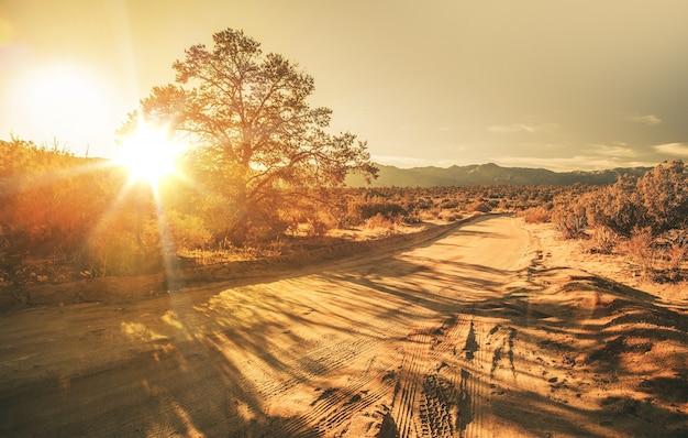 Sandy country road Foto gratuita
