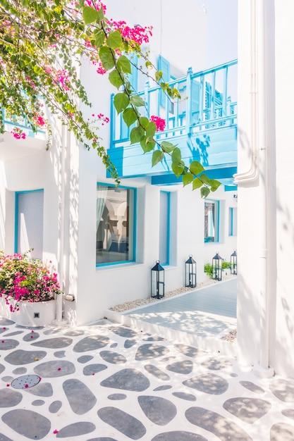 Santorini buganvílias bonita aldeia branca Foto gratuita